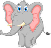 Gullig elefanttecknad film Arkivfoton