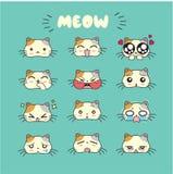Gullig emoji för katt, smileysymbolsuppsättning Royaltyfria Foton
