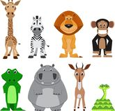Gullig färgrik exotisk djursamling Arkivfoto