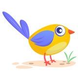 gullig fågeltecknad film Isolerad illustration för vektorfågelsymbol royaltyfria foton