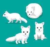 Gullig för tecknad filmvektor för arktisk räv illustration Fotografering för Bildbyråer