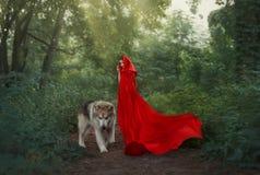 Gullig fantastisk bild av sagateckenet, mystisk mörker-haired flicka med det långa flyget som vinkar scharlakansrött rött ljust fotografering för bildbyråer