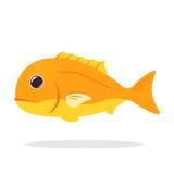 Gullig fisktecknad film Fisksymbol Royaltyfria Bilder