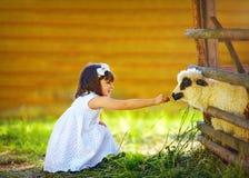Gullig flicka, matande lamm för unge med gräs, bygd Royaltyfri Foto