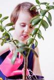 Gullig flickaträdgårdsmästare för litet barn som tar omsorg av houseplanten Crassu royaltyfri foto