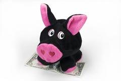 Gullig flott toy som är piggy med en dollar Arkivbilder