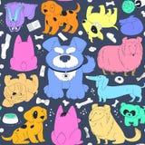 Gullig färgrik hundkapplöpning Arkivfoto