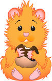gullig hamster Royaltyfri Fotografi