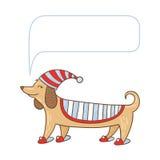 Gullig hund för tax Royaltyfri Bild