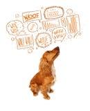 Gullig hund med att skälla bubblor Royaltyfria Bilder