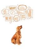 Gullig hund med att skälla bubblor Royaltyfri Fotografi