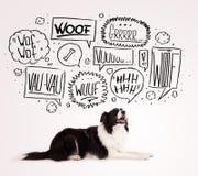 Gullig hund med att skälla bubblor Arkivfoton