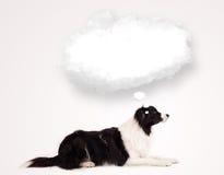 Gullig hund med den tomma molnbubblan Arkivbild