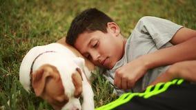 Gullig hund och förtjusande unge som lägger ner i gräs Valpen äter gräs arkivfilmer
