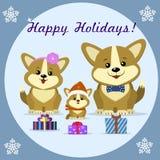 Gullig hundcorgi för julkort tre vektor illustrationer