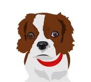 Gullig hundillustration Arkivbilder