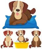 Gullig hundkapplöpning i olika handlingar royaltyfri illustrationer