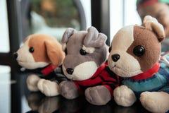 Gullig hundkapplöpningdocka royaltyfri fotografi