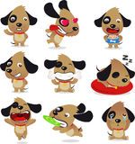 Gullig hundvalpuppsättning Royaltyfria Bilder