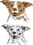 gullig hundvektor Royaltyfri Foto