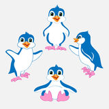 Gullig illustration för pingvinuppsättningtecknad film Arkivfoto