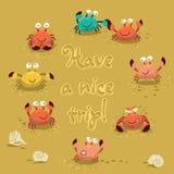 Gullig illustration för vektor av färgrika krabbor och Fotografering för Bildbyråer
