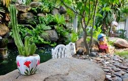 gullig kaktus Royaltyfri Foto