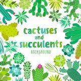 Gullig kaktus och suckulent Vektorram, baner, kort, inbjudanmallar royaltyfri illustrationer