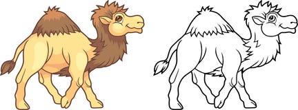 Gullig kamel, rolig illustrationfärgläggningbok vektor illustrationer