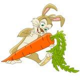 gullig kanin för tecknad film Arkivfoton