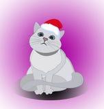 Gullig katt för jul Arkivfoton