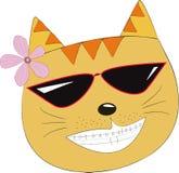 Gullig kattframsida Arkivfoto