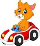 Gullig katttecknad film som kör bilen Fotografering för Bildbyråer