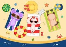Gullig koala, kanin och katt på stranden vektor illustrationer