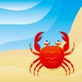 gullig krabba little Royaltyfri Bild
