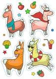 Gullig lamauppsättning som isoleras på vit bakgrund Kalla alpacas för affisch, klistermärke, hälsningkort eller tryck royaltyfri illustrationer