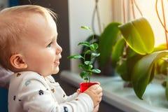 Gullig liten caucasian litet barnpojke med modern som ler och har den roliga innehavkrukan med den planterade blomman nära föns royaltyfri foto