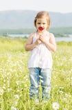 Gullig liten flicka i kamomillfältet Royaltyfri Fotografi