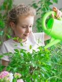 Gullig liten flicka som bevattnar blommor Royaltyfria Bilder