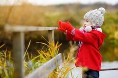 Gullig liten flicka som har gyckel på härlig höstdag Det lyckliga barnet som spelar i höst, parkerar Lövverk för nedgång för unge royaltyfri bild