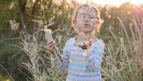 Gullig liten flicka som har roligt blåsa maskrosfrö, medan koppla av på naturen stock video