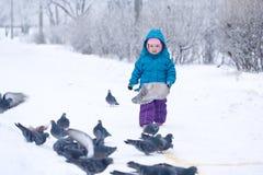 Gullig liten flicka som matar duvor Arkivfoton