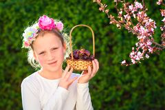Gullig liten flicka som poserar med ny frukt i den soliga trädgården Liten flicka med korgen av druvor fotografering för bildbyråer