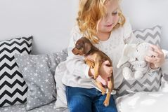 Gullig liten flicka som spelar med den lilla hunden och den mjuka leksaken royaltyfria foton