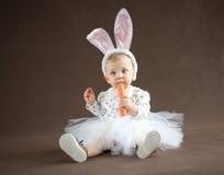 Gullig liten kanin Arkivfoto