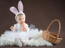 Gullig liten kanin med moroten Royaltyfri Fotografi