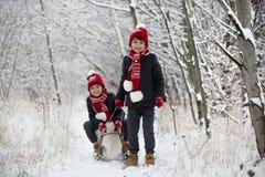 Gullig liten litet barnpojke och hans äldre bröder som utomhus spelar med snö på en vinterdag arkivbild