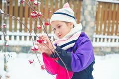 Gullig litet barnflicka i vinterbyn som ser djupfrysta röda bär Royaltyfri Bild