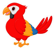 Gullig macawfågeltecknad film vektor illustrationer