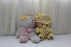 Gullig nallebjörn för gåva & valentindag royaltyfri foto
